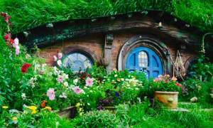 One of Hobbiton Movie Set and Farm Tours homely Hobbit holes