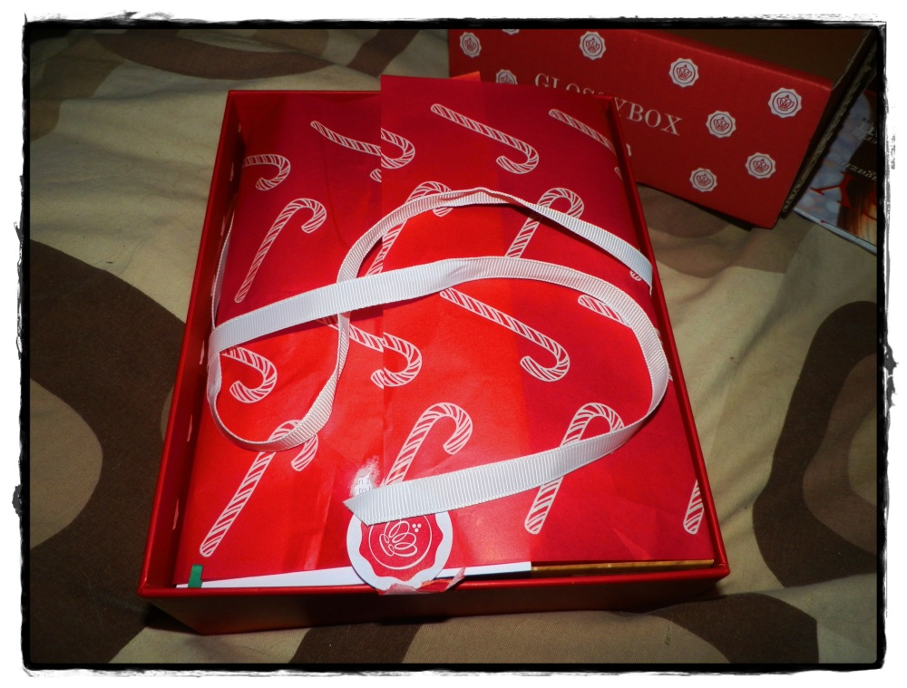 Have you missed me? GlossyBox Monthly Review – December (2/6)
