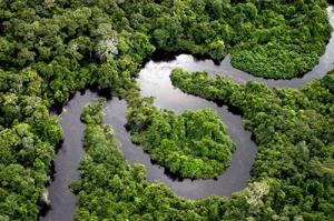 Amazon-rainforest-facts-River