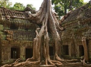 Angkor-cambodia-2